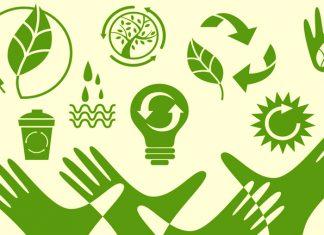 O que é sustentabilidade ambiental